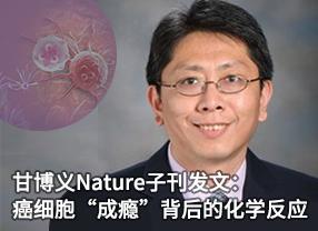 """甘博義Nature子刊發文:癌細胞""""成癮""""背后的化學反應"""