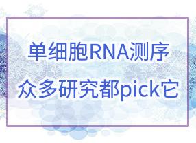單細胞RNA測序,眾多研究都pick它!