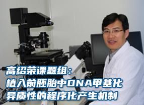 高绍荣课题组:植入前胚胎中DNA甲基化异质性的程序化产生机制