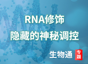 RNA修饰隐藏的神秘调控